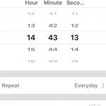WiWo S20 schedule